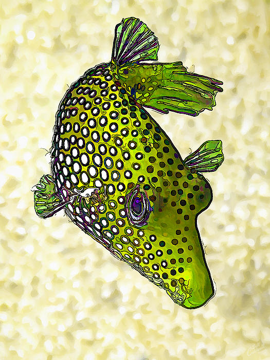 Guinea Fowl Puffer Fish In Green Print by Bill Caldwell -        ABeautifulSky Photography