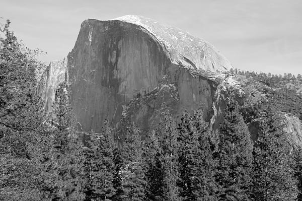 Half Dome Yosemite Print by Heidi Smith