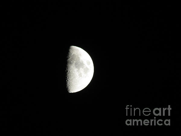 Half Moon Print by Charity Hommel