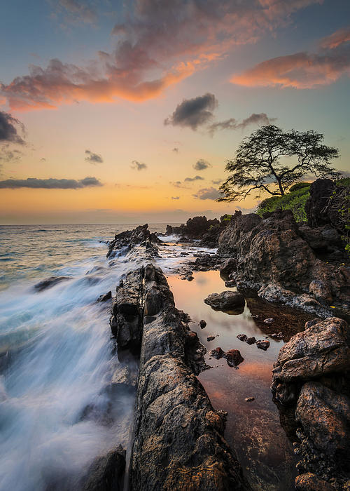 Half Reflection Print by Hawaii  Fine Art Photography