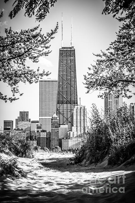 Hancock Building Through Trees Black And White Photo Print by Paul Velgos