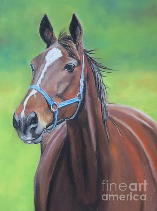 Hanover Shoe Farm Horse Print by Charlotte Yealey