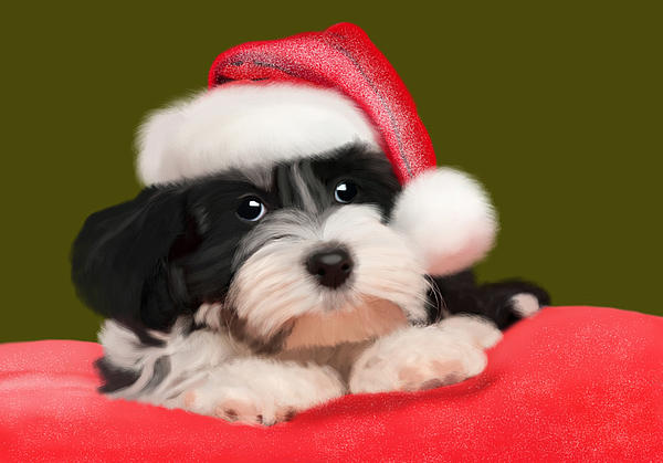 Happy Holidays Print by Nataly Rubeo
