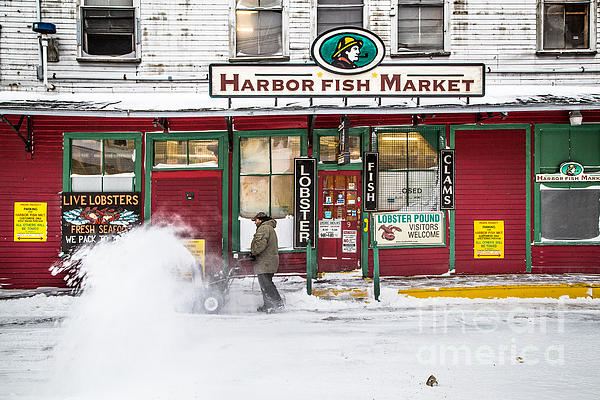 Harbor fish market in winter by benjamin williamson for Harbor fish market portland maine