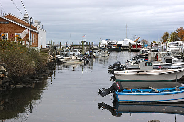 Harbor Wickford Ri Print by Gail Maloney
