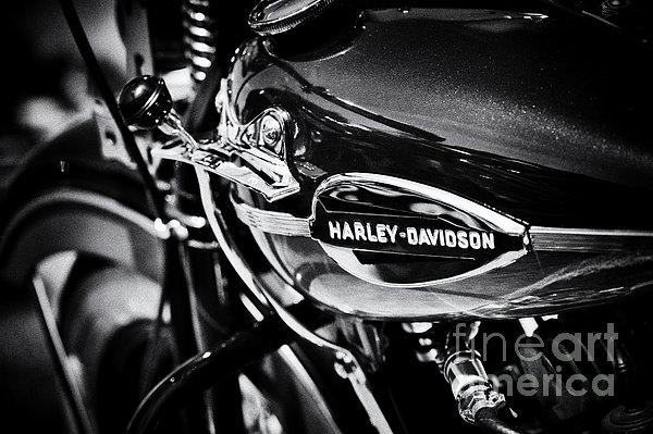 Harley Davidson Monochrome Print by Tim Gainey
