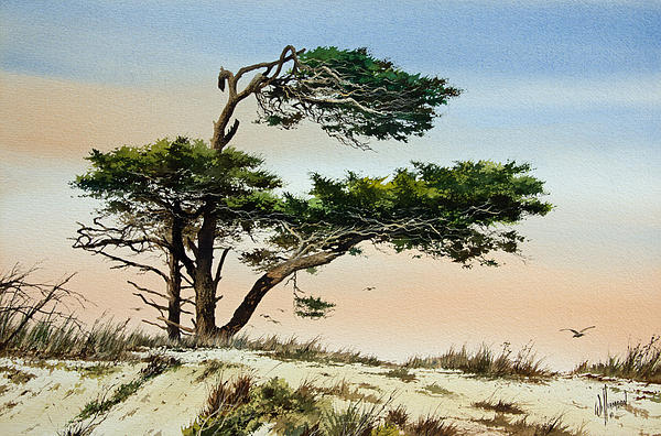 Harmony Of Nature Print by James Williamson