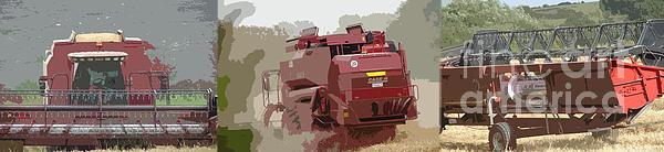 Harvest 4 Print by Carol Lynch