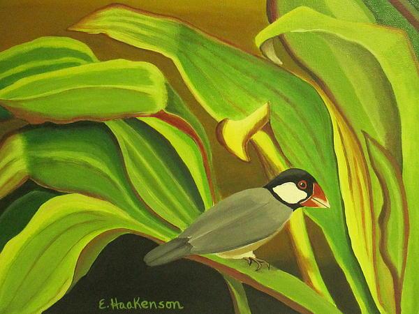 Hawaiian Finch On Tea Leaves Print by Elaine Haakenson