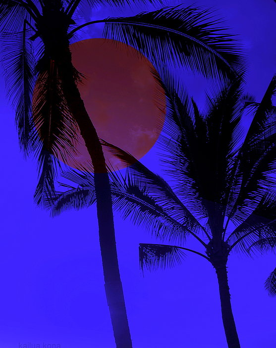 Athala Carole Bruckner - Hawaiian Moon Light