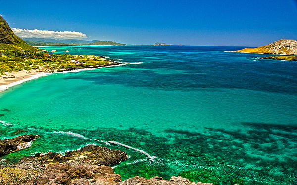 Hawaiian Water Print by Michael Misciagno