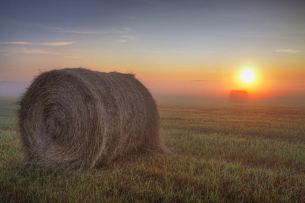 Dan Jurak - Hay Bales On A Foggy Alberta Morning