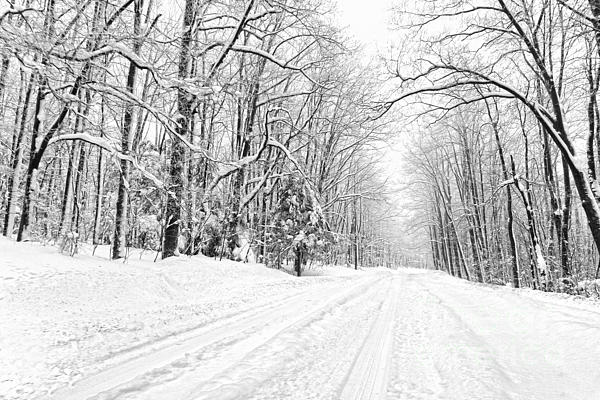 Heading For Davis West Virginia After Snow Storm Print by Dan Friend
