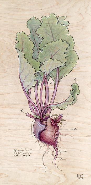 Heart Beet Print by Fay Helfer
