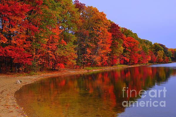 Heart Of Autumn Print by Terri Gostola