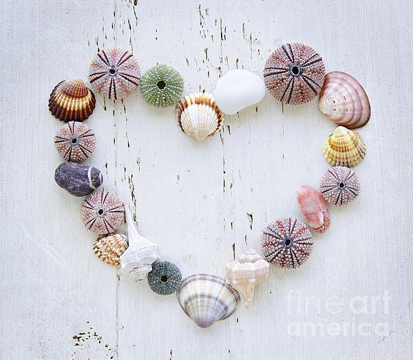 Heart Of Seashells And Rocks Print by Elena Elisseeva