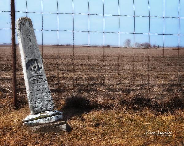 Here Lies George Neve - Walcott Iowa Print by Mary Machare