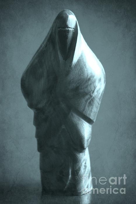 hidden Identity Print by Sophie Vigneault
