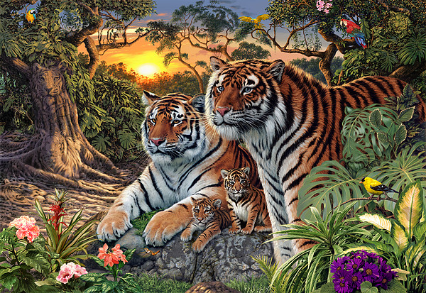 Hidden Images - Tigers Print by Steve Read
