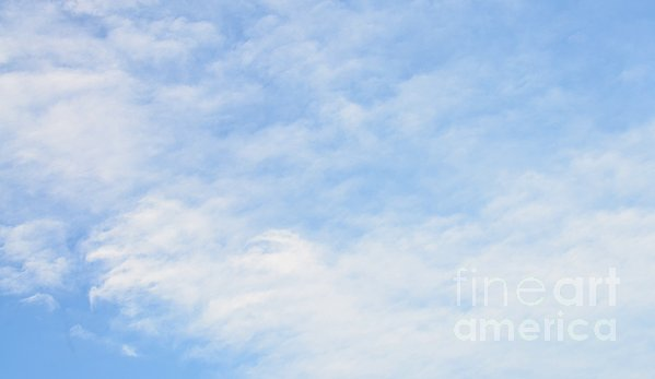 High In The Sky Print by Kathleen Struckle