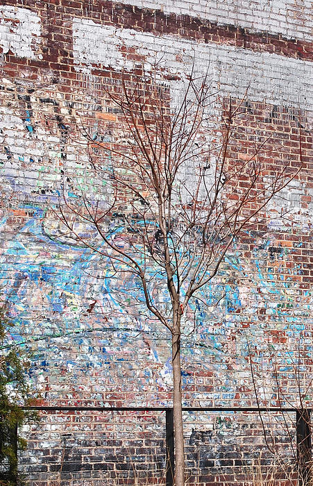High Line Palimpsest Print by Rona Black