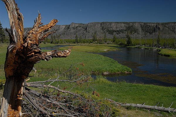 Hiking The Rivers Of Yellowstone Print by Larry Moloney