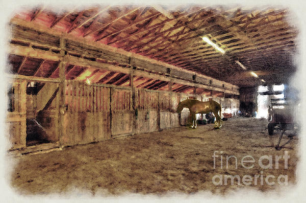 Horse In Barn Print by Dan Friend