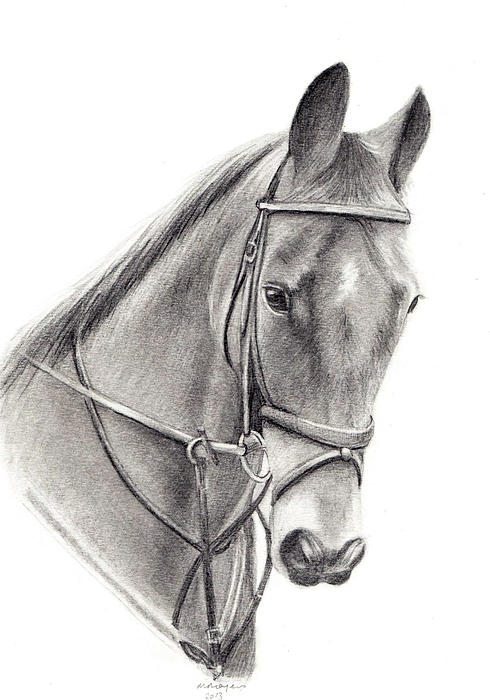 Horse Print by Mary Mayes