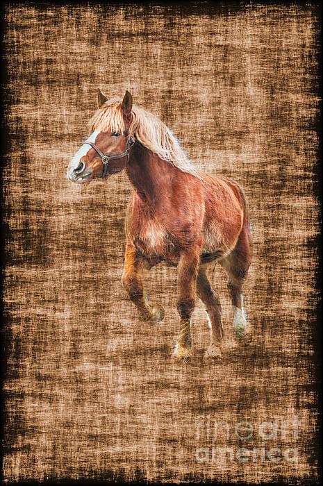 Horse Running Print by Dan Friend