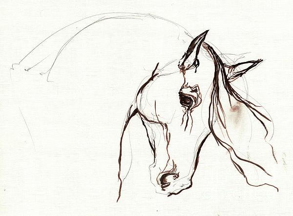 Horse Sketch Print by Angel  Tarantella