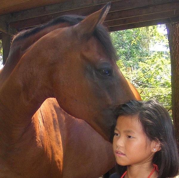 Horses And Children Print by Rene Trebing