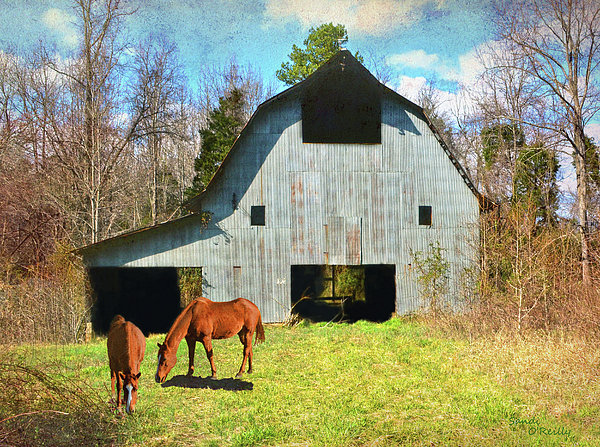 Horses Call This Old Barn Home Print by Sandi OReilly