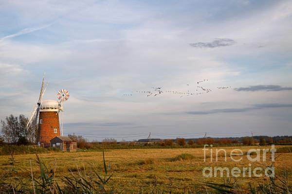 Horsey Windmill In Autumn Print by Louise Heusinkveld