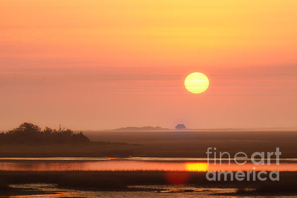 House Of The Rising Sun Print by Jo Ann Tomaselli