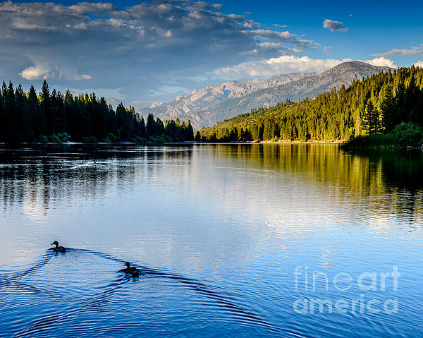 Hume Lake Evening Print by Terry Garvin