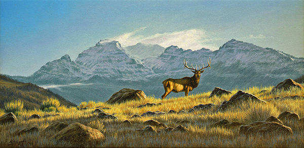 Hunter's Dream - Elk Print by Paul Krapf
