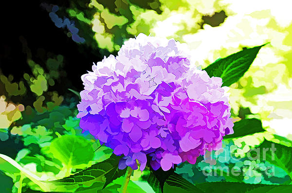 Hydrangea In Watercolor Print by Luther Fine Art