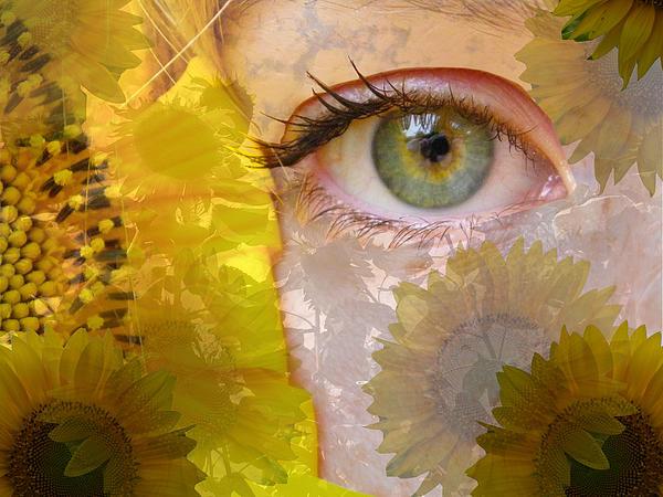 Sarah Egan - I See Sunflowers