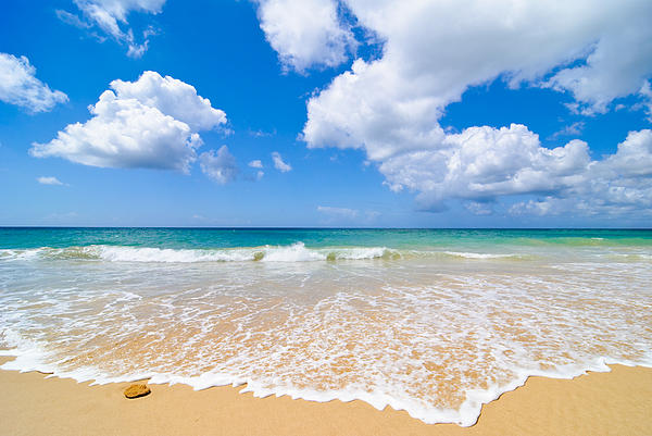 Idyllic Summer Beach Algarve Portugal Print by Amanda And Christopher Elwell