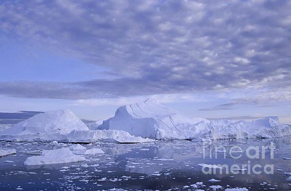 Ilulissat Icefjord Greenland Print by Rudi Prott