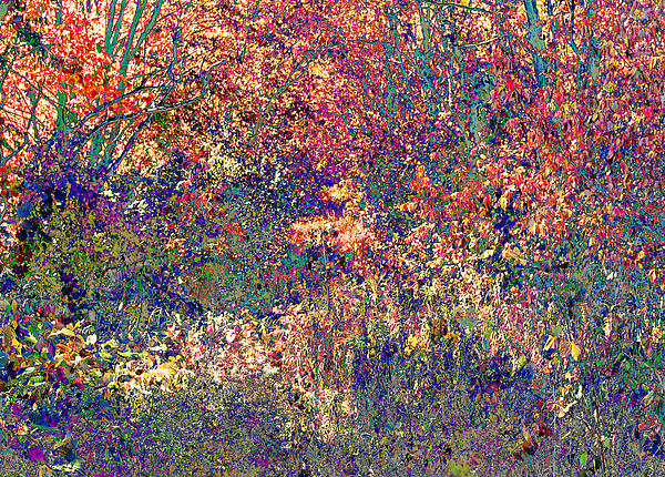 James Hammen - Impressionistic Forest