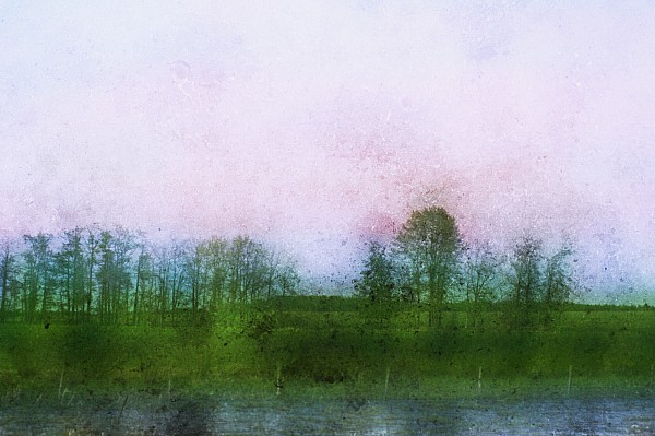 Impressionistic Style Of Trees Print by Roberta Murray