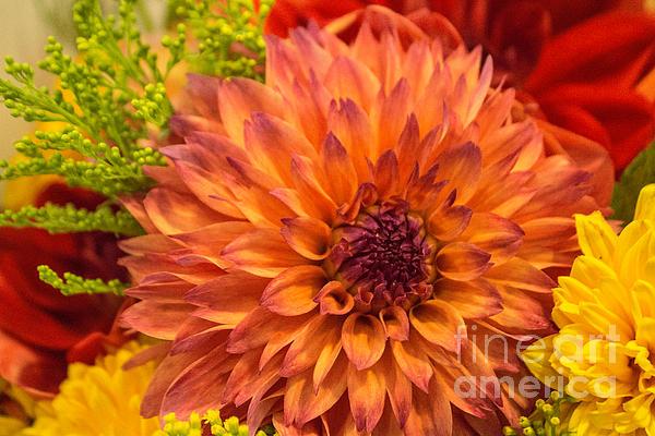 Arlene Carmel - In A Bouquet