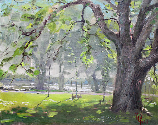 In The Shade Of The Big Tree Print by Ylli Haruni