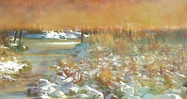 In The Twilight Print by Shirley Sirois