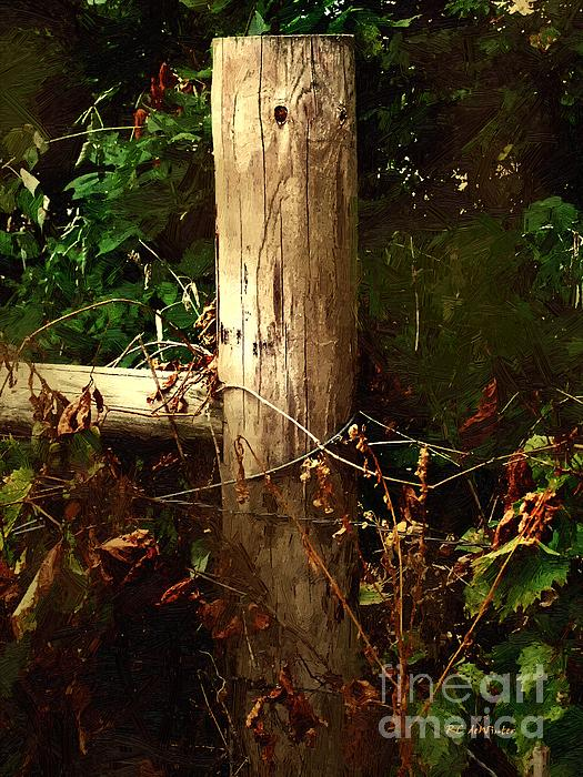 RC DeWinter - In the Woods by the River