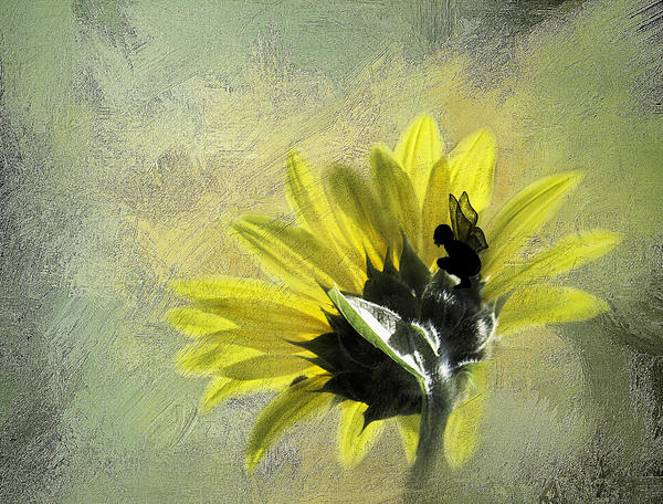 Incredibly Shy Print by Diane Schuster