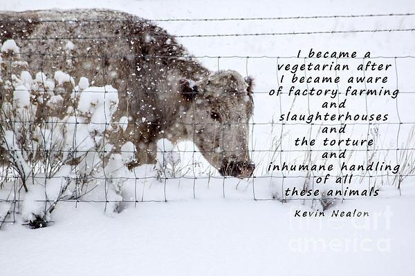 Inhumane Torture Of Animals Print by Janice Rae Pariza