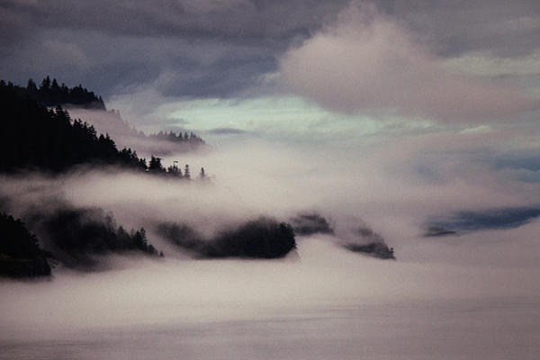 Inside Passage In The Mist Print by Vicki Jauron