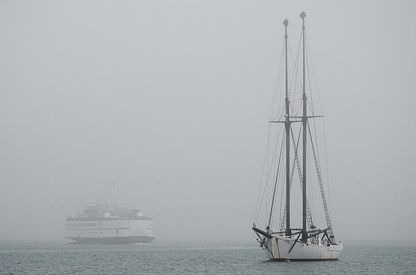 Into The Fog Print by Steve Myrick